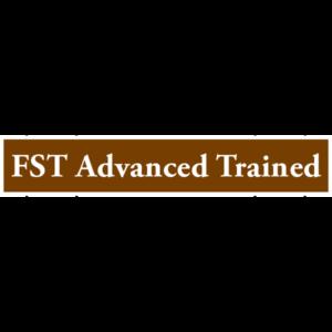 Family Trauma Institute FST Advanced Trained